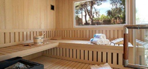 endlich daheim sauna zu hause. Black Bedroom Furniture Sets. Home Design Ideas