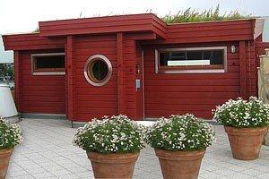 B+S Finnland Sauna